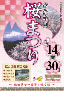 BW桜まつり.jpg